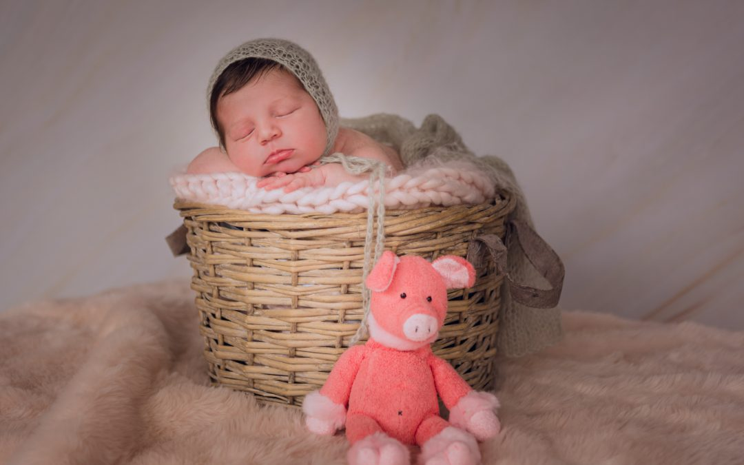 Fotógrafo recién nacido Donostía San Sebastian Resumen