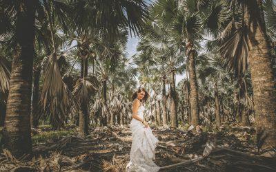 MIAMI BRIDES